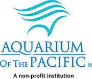 Click here to visit Aquarium of the Pacific's website for discounted tickets.